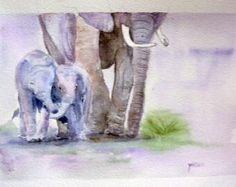 elephant watercolor oroginale