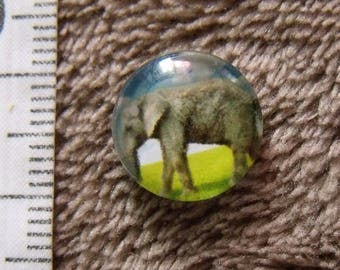 2 glass cabochons Elephant theme 12mm