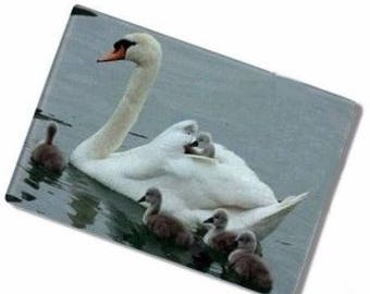 Beautiful cutting board with photo of Swan Cubs