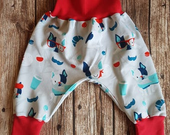 Bloomers French Bulldog size 68-74