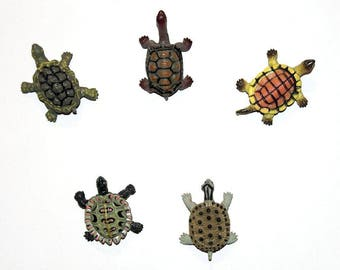 "Set of 5 magnets of five different and adorable turtles: ""Turtles"""