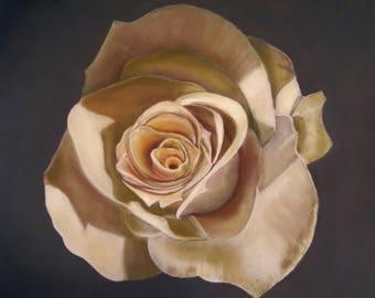 Pastel dry representing a rose