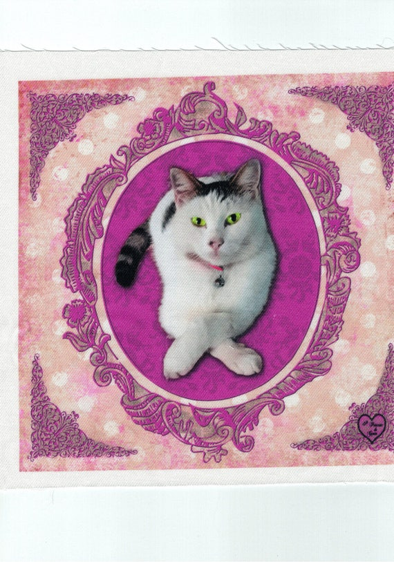 "Cat 1: coupon ""Niouniou"" cat pattern cotton twill"