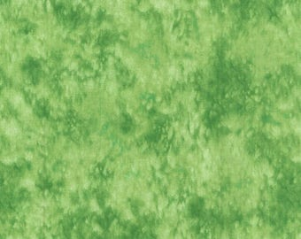 Blank Quilting - Splash - BTR3504 Pistachio - 1 YD Increment
