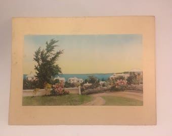 Vintage lithograph after painting by WF snow