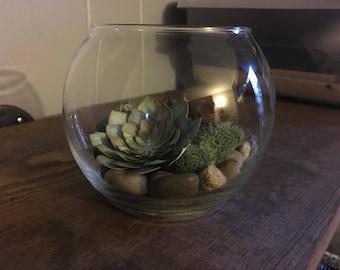 DIY - Succulent Centerpiece - Paper Succulent Centerpiece