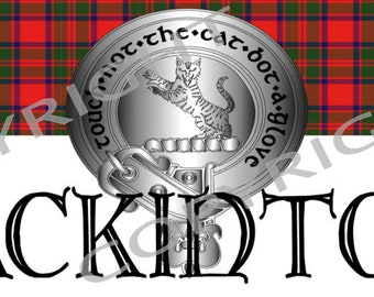 Clan Sept or Parade Banner  Any Clan