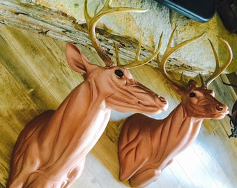 Life Sized Deer Mounts with real Antlers. Mounted with your Antlers or I'll supply.