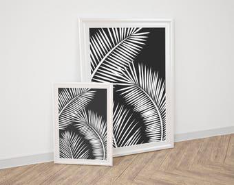 Wall Art Prints - Black Palm