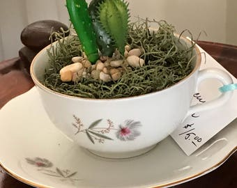 Vintage China Teacup Succulent Planters make great gifts