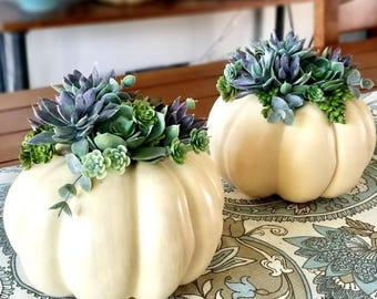 Beautiful Faux Succulent Pumpkin-Med