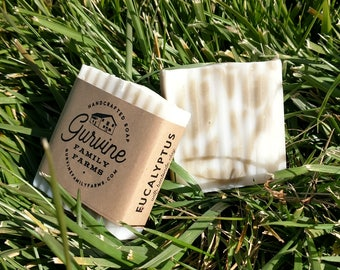 "Eucalyptus soap -  ""Workout"" soap - hand crafted Coconut Oil Bar - 3oz."