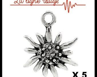 5 pendants 17mm x 13mm edelweiss flower shape