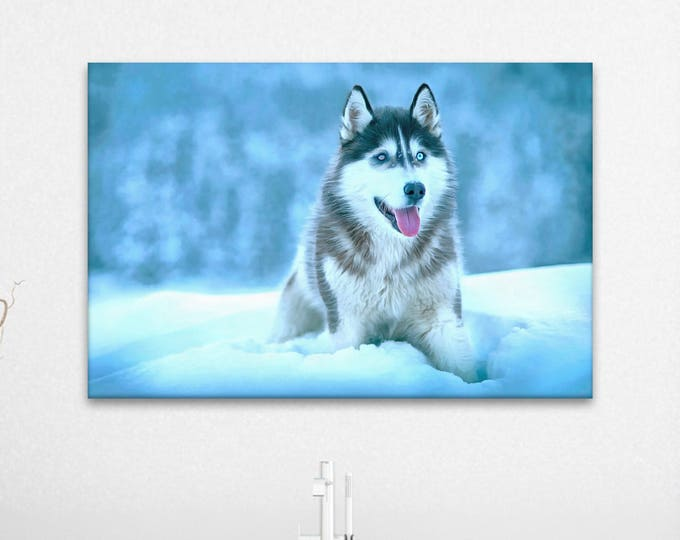 Husky dog canvas, Decor canvas, Husky decor, Wall Art Canvas Print, Interior decor, Room design, Wall Art, Print poster, Art picture, gift