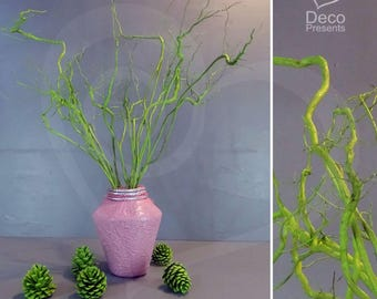 Roots painted natural for decoration 10 pieces