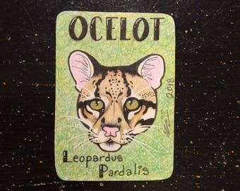 Ocelot (Wild Cat Trading Card)