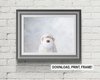 Sheep,Peekaboo,Downloadable,Animal,Nursery,Room,Decor,Decoration,Print,Printable,Wall Art,Poster,Photo,minimalism,minimalist photograph