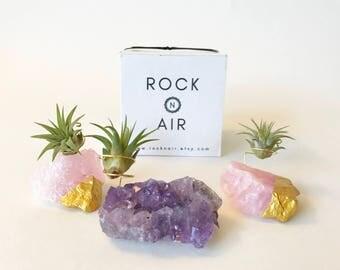 3 Gift Set of Amethyst and Rose Quartz Air Plant Holder, Valentine's Day Gift, Indoor Garden Gift, Best Friend Gift, Best Friend Gift Box