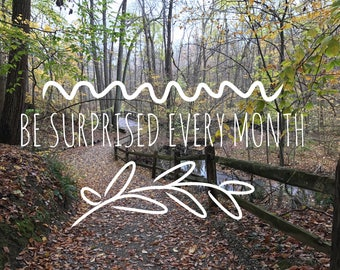 3, 6, and 12 Month Notecard Subscriptions ( + Free Seasonal Monthly Surprise)