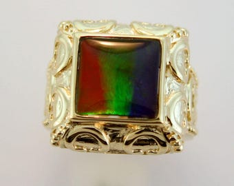 AAA Square Canadian Ammolite set on 14k gold