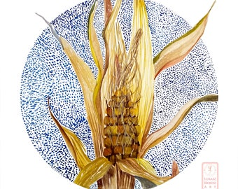 Zea Mays - corn cob watercolor digital file, white background with blue circle - Limited edition!