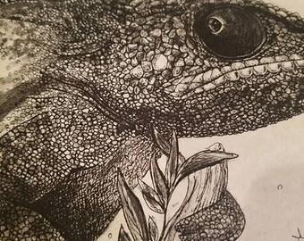 Chameleon pencil drawing/lizard print/lizard drawing/chameleon print