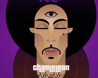 prince chameleon volume 1 cd