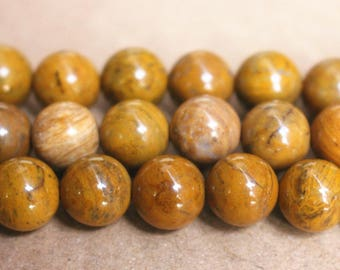 15 inches Full strand,natural yellow petrified wood jasper smooth round beads 10mm ,loose beads,semi-precious stone