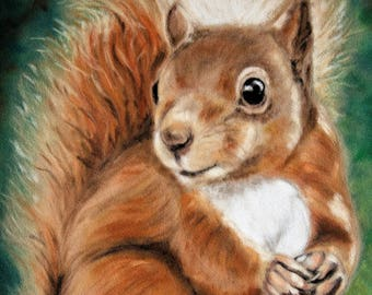Red Squirrel Wall Art - Red Squirrel Print - Woodland Animal - Squirrel Print - Animal Picture - Animal Print - British Wildlife Picture