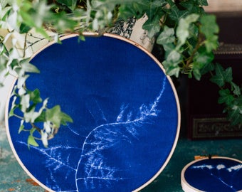 "Embroidery Hoop Wall Hanging | Cyanotype | Sun Print | Handmade | Wall Hanging | 6"" Wispy Fern Leaf Botanical Blueprint"