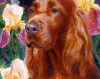 Spring Setter A Limited Edition Irish Setter Print