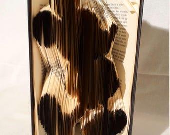 Mickey folded book