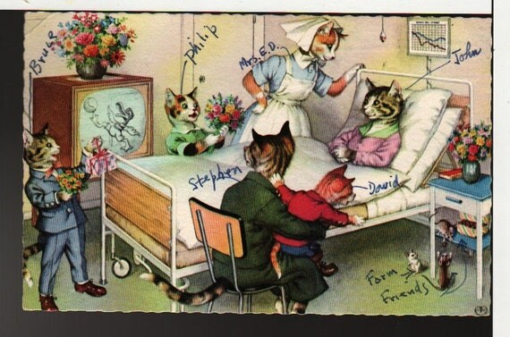 Alfred Mainzer + Cats in Hospital + Vintage Linen Postcard