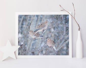 Winter Birds Print, Nursery Art, Woodland Animal Print, Nature Photography, Winter Decor, Wall Art, Mourning Doves in Snow No. 6