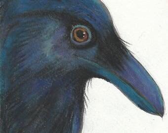 handsome raven original postcard art