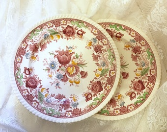 Two Johnson Brothers Bros winchester Pattern white Granite Dinner Plates