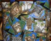 Owl Collage Toss Tote Bag Owls Birds Wildlife Trees Nest Handmade Purse