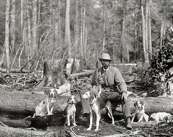 Deer Hunting With Beagles 1900's Photo