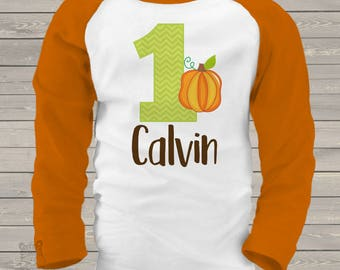 first 1st birthday pumpkin fall party RAGLAN  t-shirt SNLF-007-R