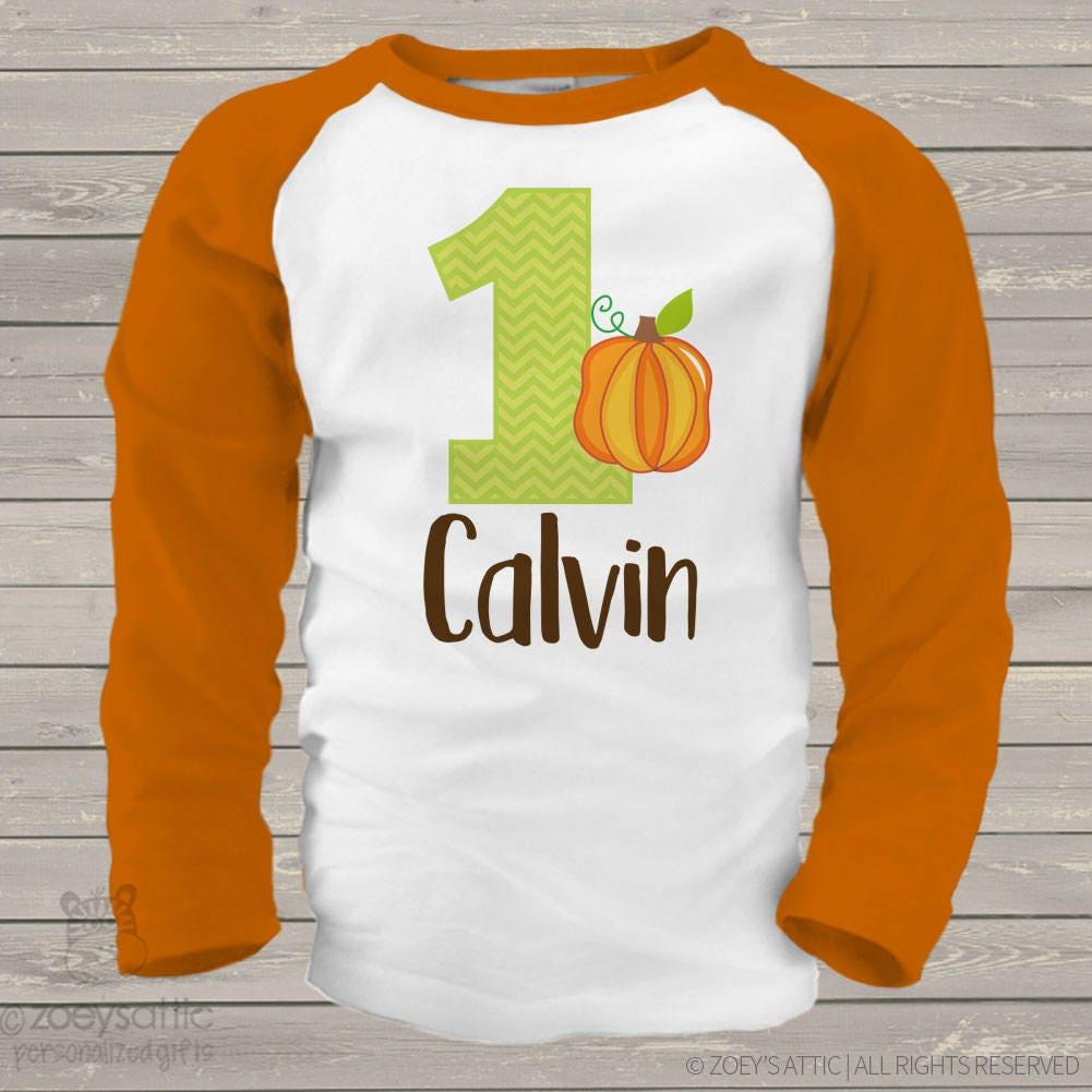First 1st Birthday Pumpkin Fall Party RAGLAN T-shirt