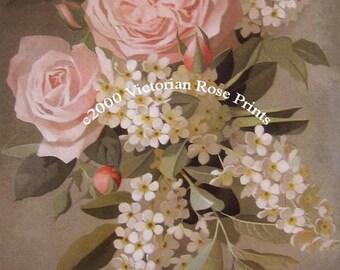 Roses, Lilacs, Art Print, Half Yard Long, Vouga, Pale Pink Cabbage Roses Lilacs