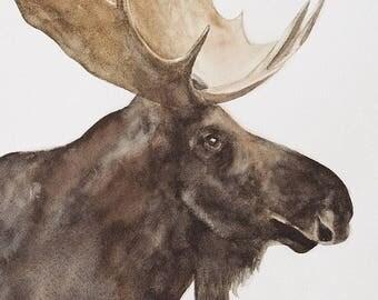 Moose painting Moose print of Moose animal nursery art print for nursery peek a boo animal print SEE PHOTOS to view all 15 PRINTS 11x14