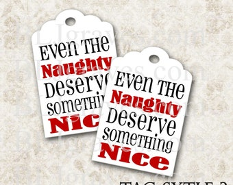 Christmas Gift Tags Vintage Style Naughty Nice Handmade Party Favor Treat Bag Tags TC061