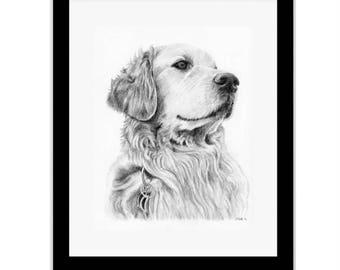 Pet Portrait PRINT, Animal Art, Retreiver,