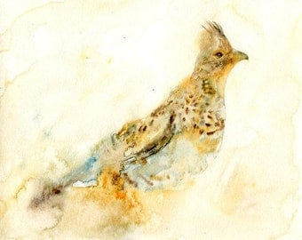 Grouse Painting, Original Watercolor painting, Bird painting, Bird Art  10x8inch