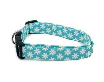 Aqua Daisy Chain Floral Dog Collar