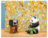 Panda animal art print: Animal Planet
