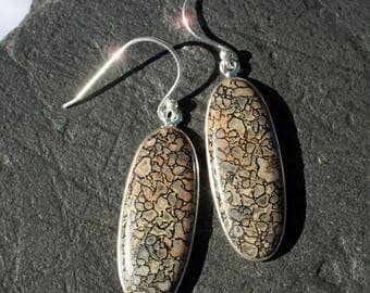 A Moment in Time - Fossilized Dinosaur Bone Sterling Silver Earrings