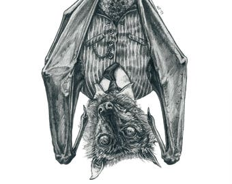 Have You Heard The Good News About Bats