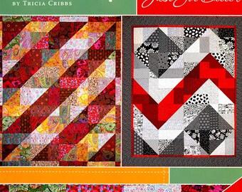 Turning Twenty Just Got Better Quilt Pattern  Fat Quarter Friendly multiple sizes